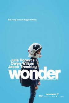 Wonder - วันเดอร์