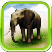 REAL ANIMALS HD (โปรแกรม REAL ANIMALS HD สัตว์โลก 3D เหมือนจริง บน Mac)